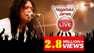 Nagarbaul James live | 31st night 2014 | Cox'sbazar
