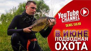 ПОДВОДНАЯ ОХОТА В ИЮНЕ 2020 Соловьиный край Река Тускарь