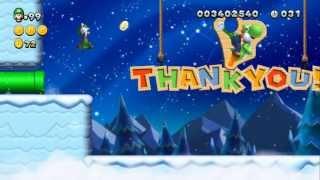 New Super Luigi U - Final Stage! - World 9 Superstar Road 9-9 - Flying Squirrel Ovation (Star Coins)