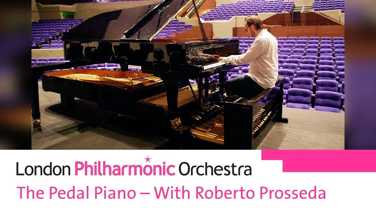 London Philharmonic Orchestra   Southbank Centre