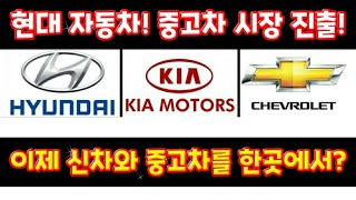 현대 자동차를 포함한 대기업들~ 중고차 시장 진출 선언…