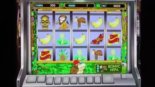 постер к видео Реальные отзывы казино вулкан   Как выиграть в автомат обезьянка  Как обыграть игровые автоматы