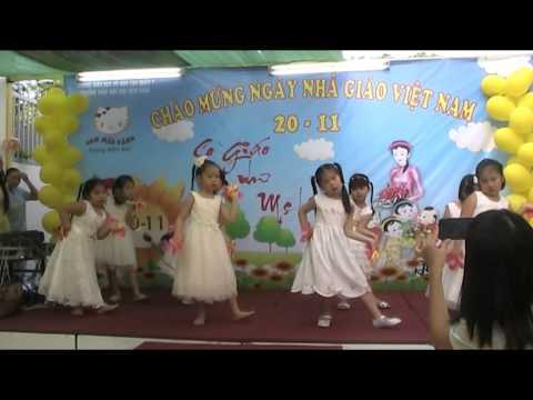 BONG HONG TANG CO-TRƯƠNG MN CON MEO VANG CS2