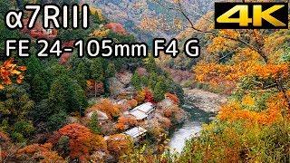 [京都・嵐山] α7RIII & FE24-105mm テスト動画 / a7RIII Test Footage - Kyoto,Japan