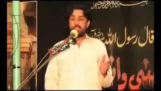 Zakir Taqi Abbas Qayamat 5 Jamadi ul Sani 2014 Shahadat Bibi Fatima Zahra sa Sargodha
