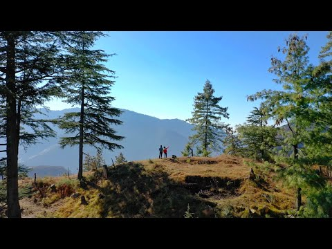 We Discovered a Hidden Gem in Tirthan Valley - Village Laida