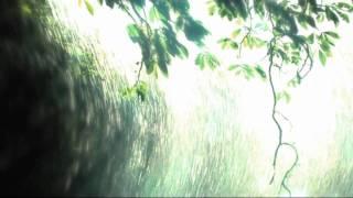 Thomas Fanger & Mario Schönwälder - Liquid Tape 5