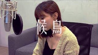 涂敏琦 Min《候鳥》女版 -  蕭煌奇 Ricky Hsiao