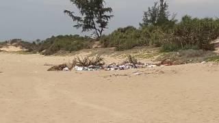 ВьетнамНячанг.Пляж Байзай.