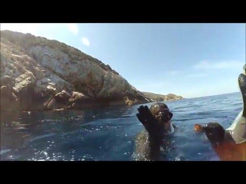 Ψαροντουφεκο στη Ναξο/ Spearfishing in Naxos