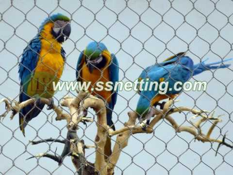 parrot fence netting, parrot enclosure mesh, parrot cages- bird net