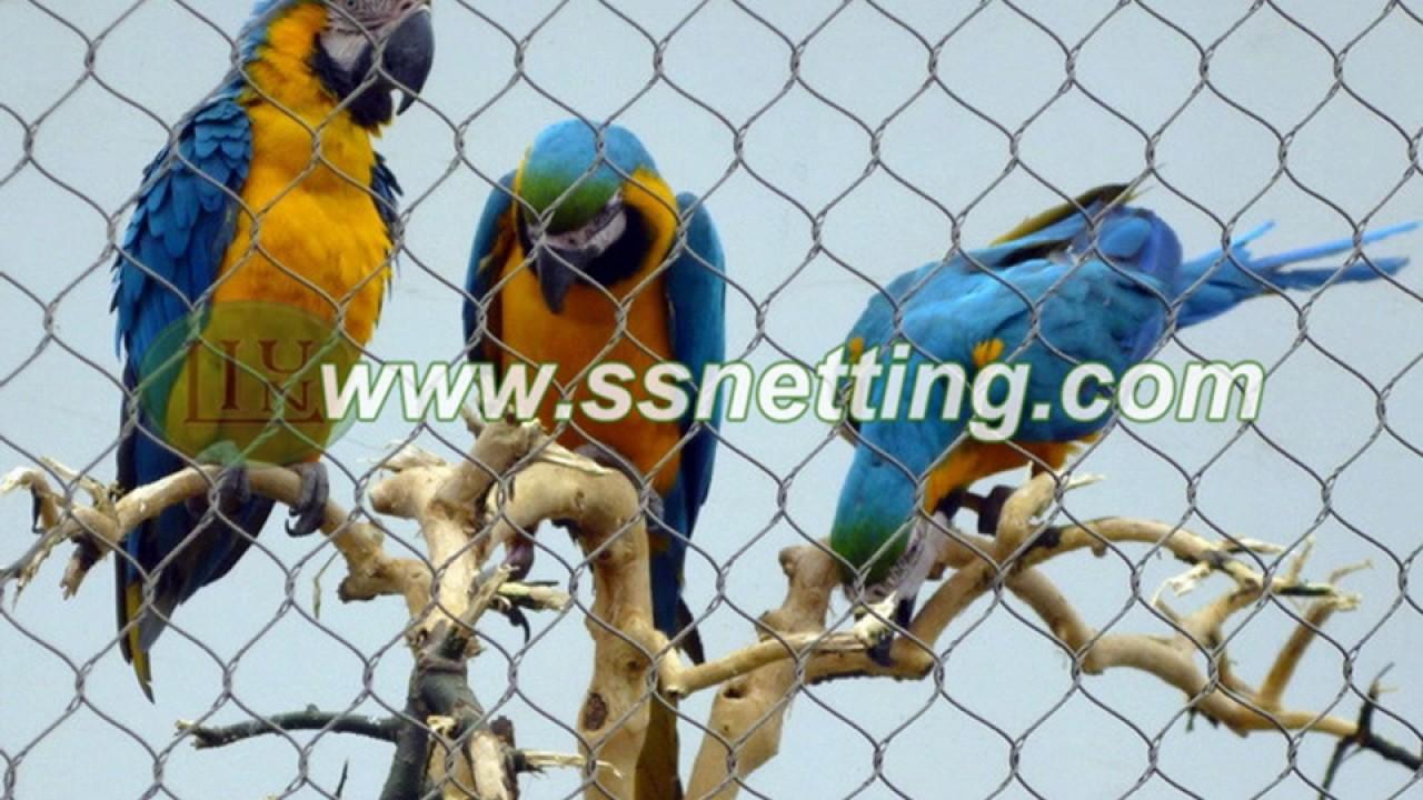parrot fence netting, parrot enclosure mesh, parrot cages- bird net ...