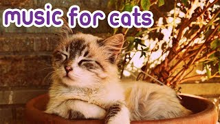 15 Hour Cat Music! Special RelaxMyCat Music! 🐈🎶