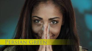 Persian Green Coloured Contact Lenses