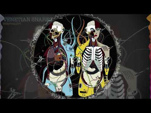 Venetian Snares - Frictional Nevada [visual] mp3
