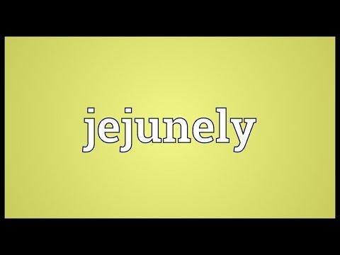 Header of jejunely