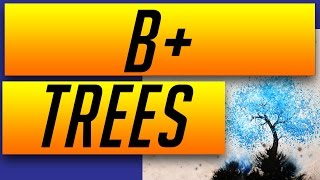 Data Structures: B+ Trees