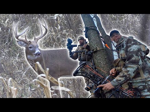 Hunting A GIANT 8 | Todd's Deer Journal Weeks 3-4