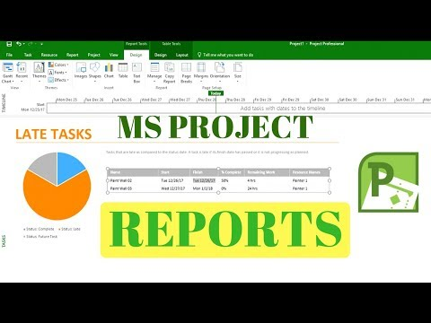 Microsoft Project 2016 Training - How To Create Dashboard Reports To Show Late Running Tasks