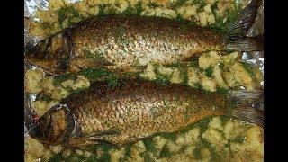 Сазан запеченный в духовке./ Как запечь рыбу в духовке.