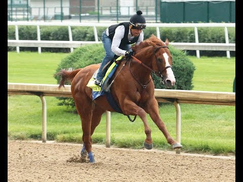 Belmont 2018 - Justify sizzles in workout