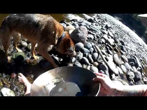 Gold Panning Blackwater Prince George British Columbia Toyota 4Runner OffRoad