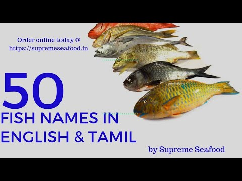 Fish names in English & Tamil | 50 varieties | By Supreme Seafood