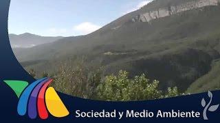 Pumas y osos detectados en la Sierra de Zapalinamé | Noticias de Coahuila thumbnail
