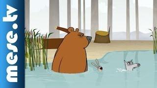 Log Jam - Legyek (rajzfilm) | MESE TV