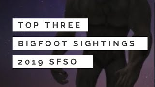 Top Three Bigfoot Sightings 2019🙉SFSO