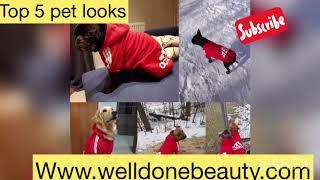 Top 5 pet looks at Welldonebeauty.com #dogs #cats