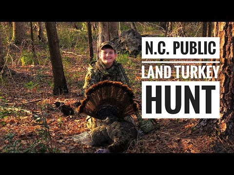 NC Public Land Turkey Hunt