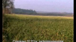 Ziemia rolna Czarnkowo 10,22 ha