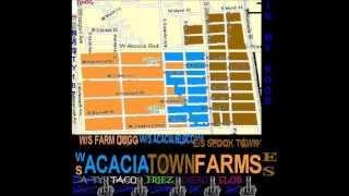 Acacia Blocc Compton Crips & Surenos13