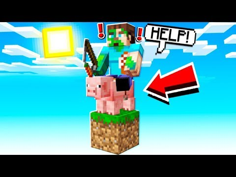 TRAPPED WITH THIS PIG ON A SINGLE MINECRAFT BLOCK!