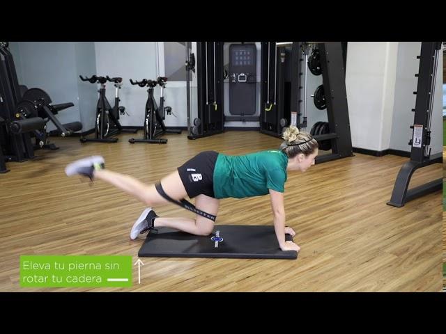 Extension de cadera en cuadrupedia