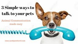3 tips to talk to animals (how to master animal communications fast)