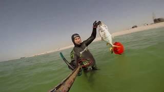 Подводная охота в Персидском заливе