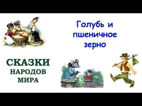Голубь и пшеничное зерно мультфильм