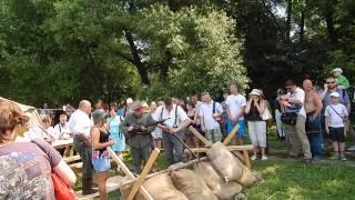 Коломенское, фестиваль