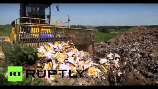 Уничтожение продуктов в России (песня)