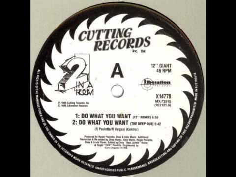 2 In A Room  Do What You Want 12 Inch Remix Cutting Records