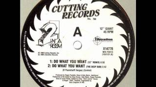 2 In A Room - Do What You Want (12 Inch Remix) (Cutting Records)