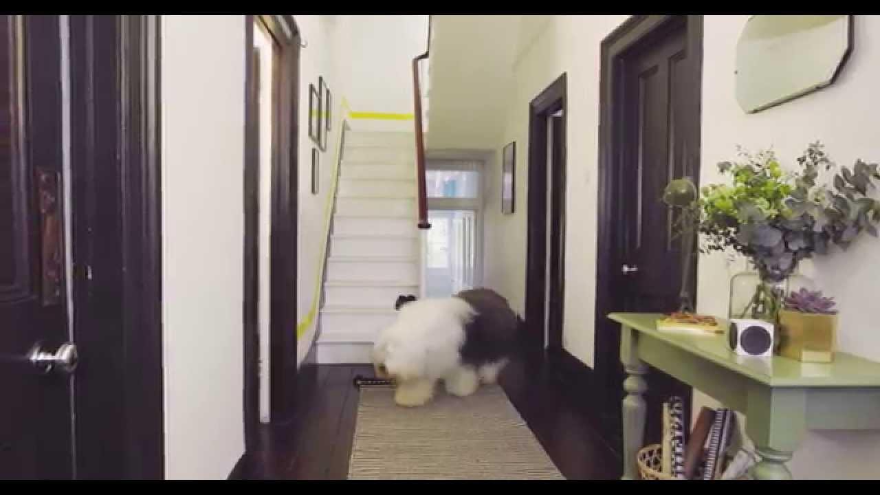 Dulux Hallway Ideas Colour Accents Youtube