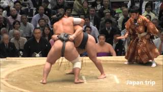鶴竜 vs 栃ノ心の取組。 2016大相撲春場所6日目。