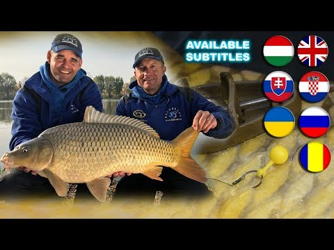 Coldwater Feeder Fishing for Carp  episode 19.   Method Delicacies  A movie by Gábor Döme