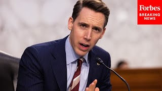 Hawley grills FBI Director on use of geolocation and metadata to track January 6th rioters