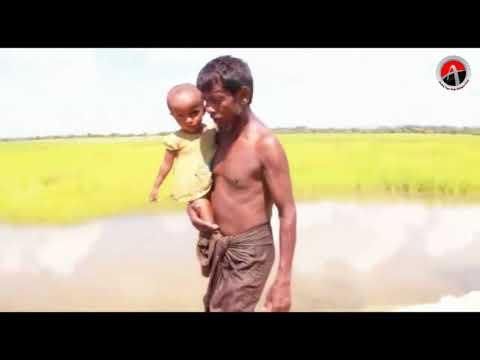 Rohingya crisis: the world's fastest growing humanitarian crisis - AT News