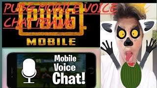 Pubg mobile voice chat prank/ O dallay ibrar ali playing games