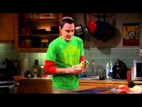 The Big Bang Theory Season 2 Funniest Scenes